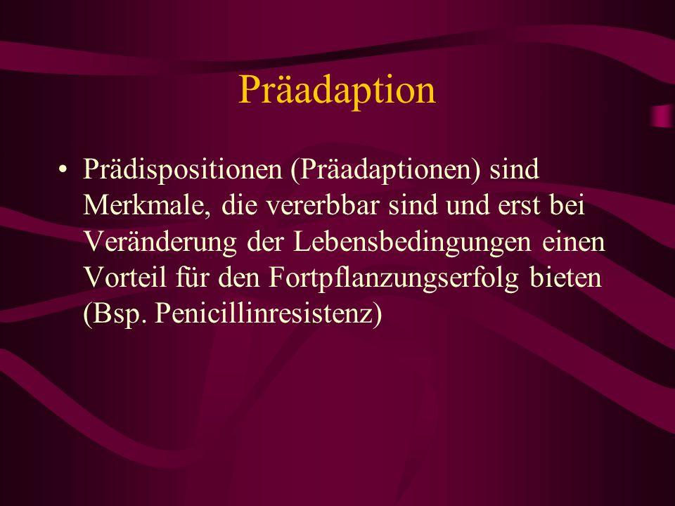 Präadaption Prädispositionen (Präadaptionen) sind Merkmale, die vererbbar sind und erst bei Veränderung der Lebensbedingungen einen Vorteil für den Fo