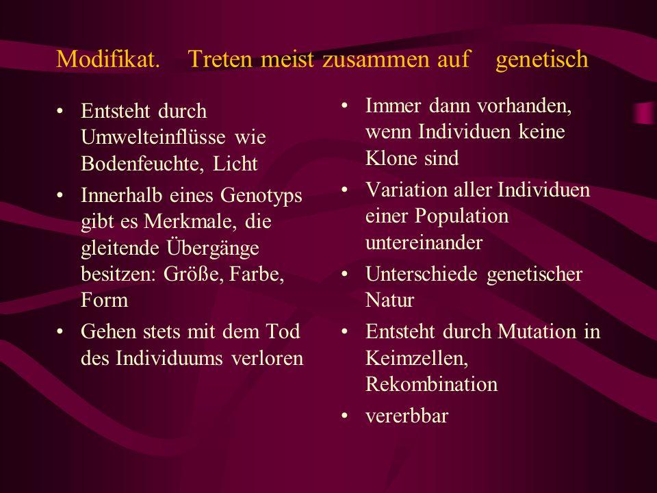 Modifikat.Treten meist zusammen auf genetisch Entsteht durch Umwelteinflüsse wie Bodenfeuchte, Licht Innerhalb eines Genotyps gibt es Merkmale, die gl