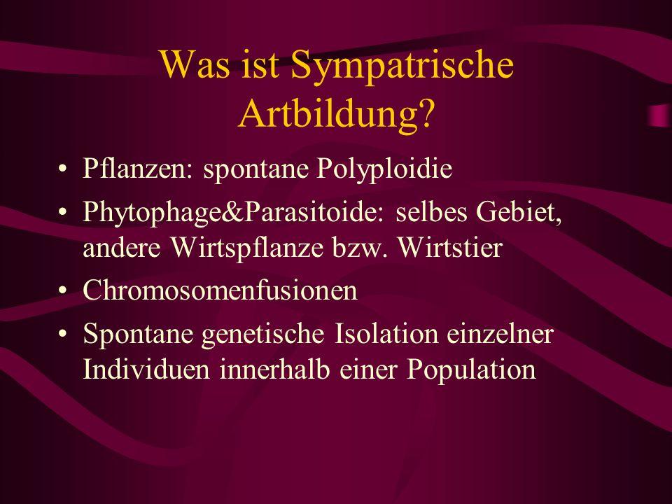 Was ist Sympatrische Artbildung? Pflanzen: spontane Polyploidie Phytophage&Parasitoide: selbes Gebiet, andere Wirtspflanze bzw. Wirtstier Chromosomenf