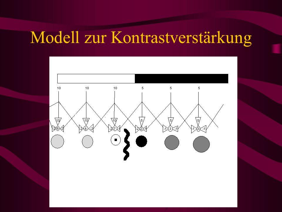 Modell zur Kontrastverstärkung