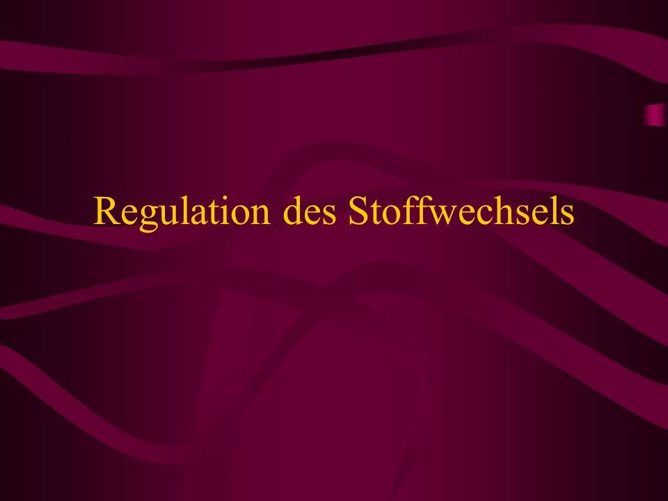 Regulation des Stoffwechsels
