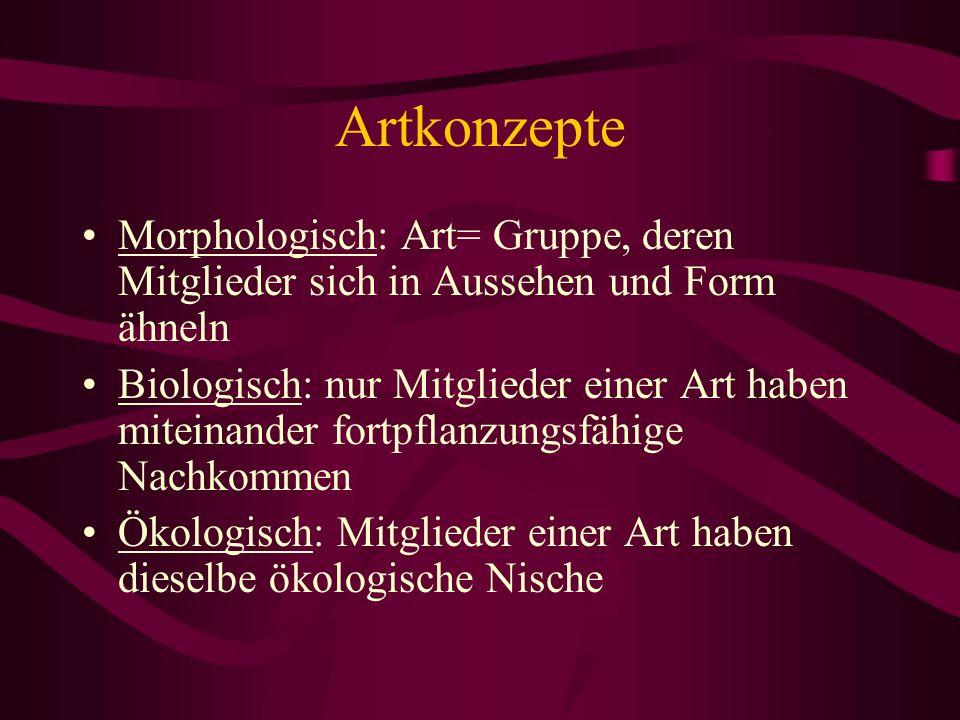 Artkonzepte Morphologisch: Art= Gruppe, deren Mitglieder sich in Aussehen und Form ähneln Biologisch: nur Mitglieder einer Art haben miteinander fortp