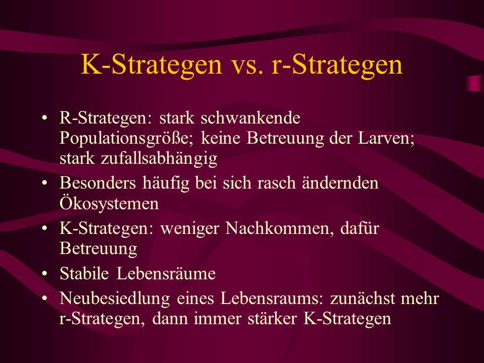 K-Strategen vs. r-Strategen R-Strategen: stark schwankende Populationsgröße; keine Betreuung der Larven; stark zufallsabhängig Besonders häufig bei si