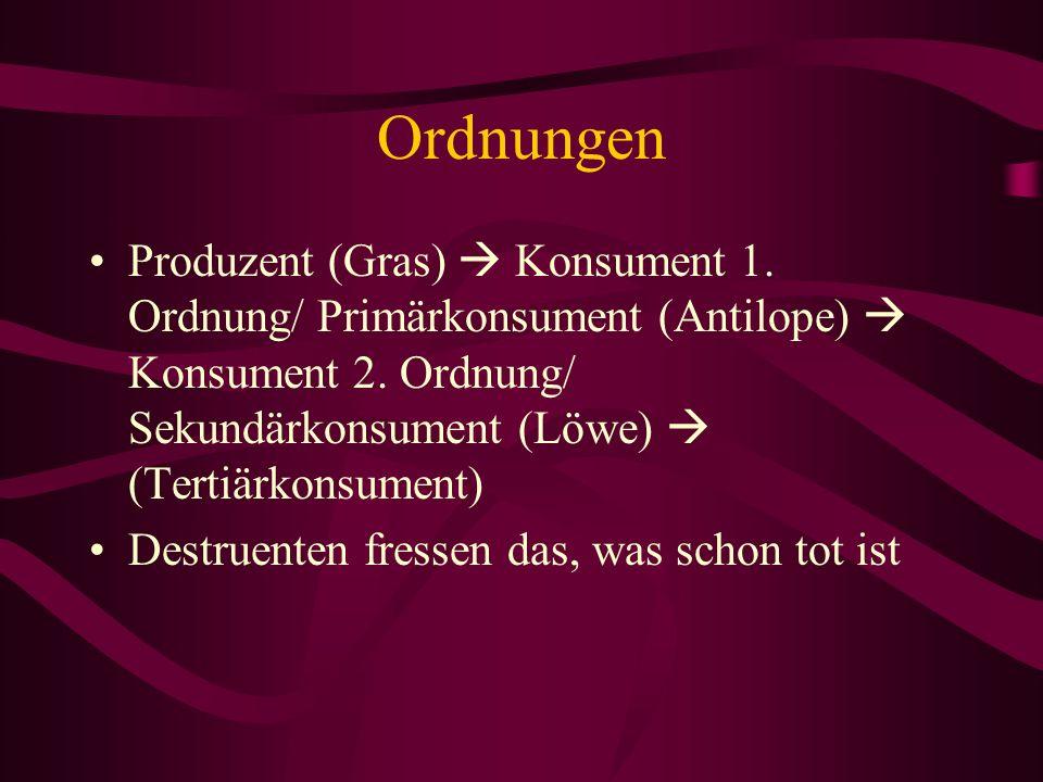 Ordnungen Produzent (Gras) Konsument 1. Ordnung/ Primärkonsument (Antilope) Konsument 2. Ordnung/ Sekundärkonsument (Löwe) (Tertiärkonsument) Destruen
