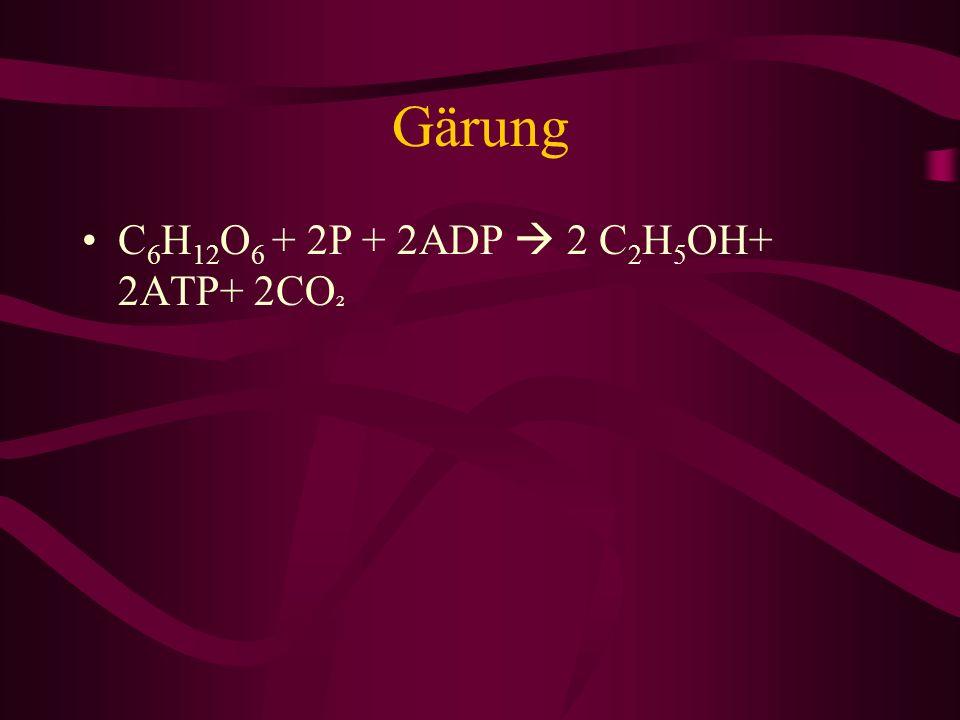 Gärung C 6 H 12 O 6 + 2P + 2ADP 2 C 2 H 5 OH+ 2ATP+ 2CO ²