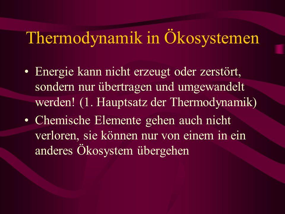 Thermodynamik in Ökosystemen Energie kann nicht erzeugt oder zerstört, sondern nur übertragen und umgewandelt werden! (1. Hauptsatz der Thermodynamik)