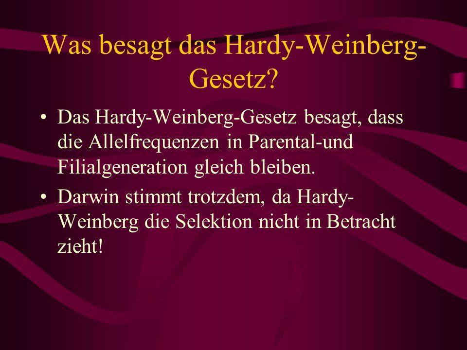Was besagt das Hardy-Weinberg- Gesetz? Das Hardy-Weinberg-Gesetz besagt, dass die Allelfrequenzen in Parental-und Filialgeneration gleich bleiben. Dar