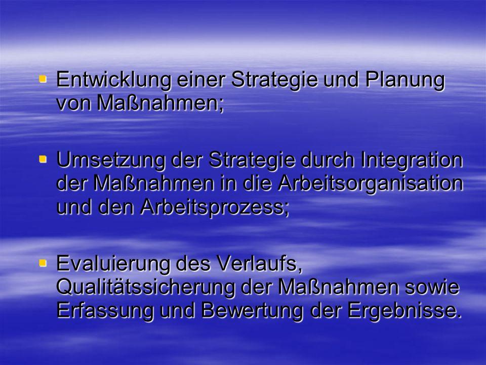 Entwicklung einer Strategie und Planung von Maßnahmen; Entwicklung einer Strategie und Planung von Maßnahmen; Umsetzung der Strategie durch Integratio