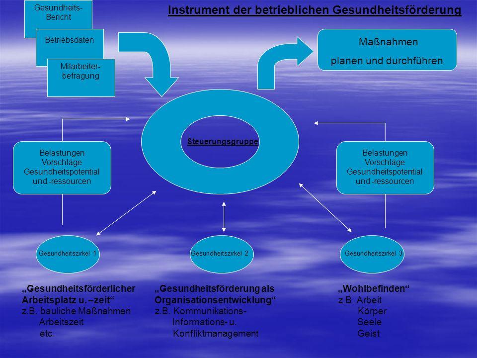 Maßnahmen planen und durchführen Belastungen Vorschläge Gesundheitspotential und -ressourcen Belastungen Vorschläge Gesundheitspotential und -ressourc