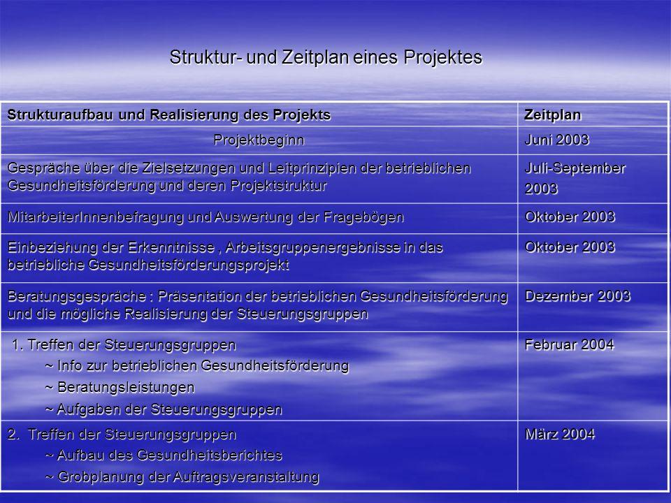 Struktur- und Zeitplan eines Projektes Strukturaufbau und Realisierung des Projekts Zeitplan Projektbeginn Juni 2003 Gespräche über die Zielsetzungen