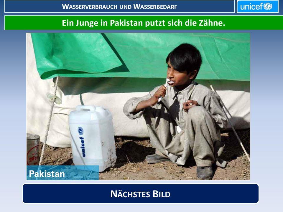 W ASSERVERBRAUCH UND W ASSERBEDARF Ein Junge in Pakistan putzt sich die Zähne. N ÄCHSTES B ILD