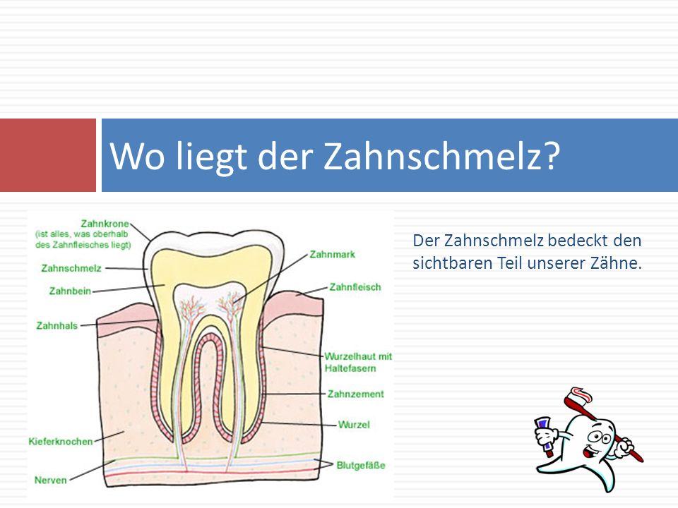 Der Zahnschmelz bedeckt den sichtbaren Teil unserer Zähne. Wo liegt der Zahnschmelz?