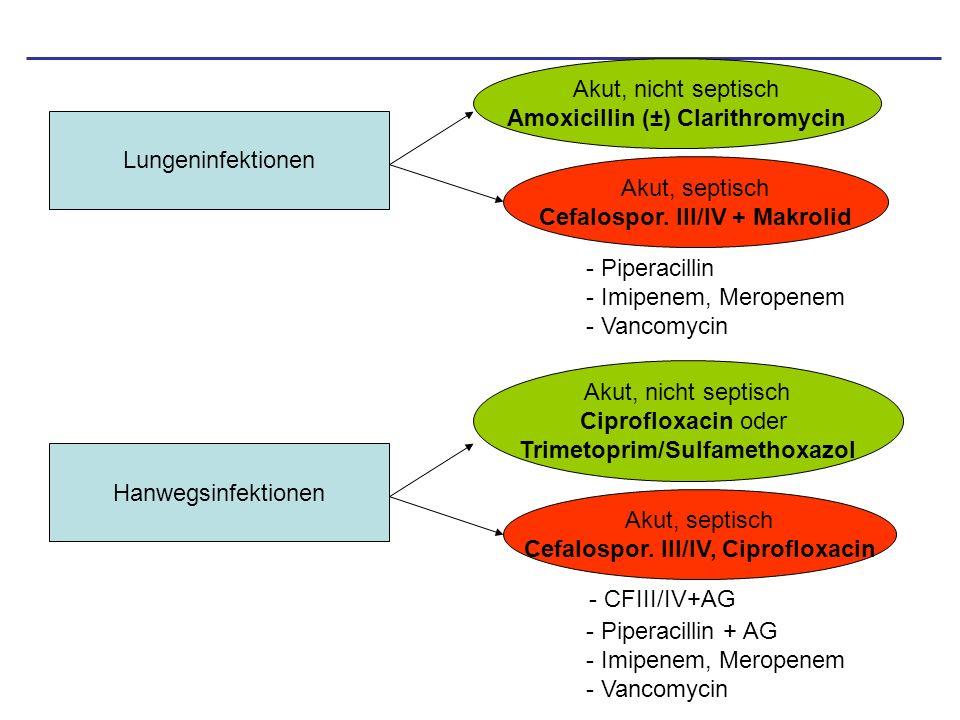 Lungeninfektionen Akut, nicht septisch Amoxicillin (±) Clarithromycin Akut, septisch Cefalospor. III/IV + Makrolid - Piperacillin - Imipenem, Meropene