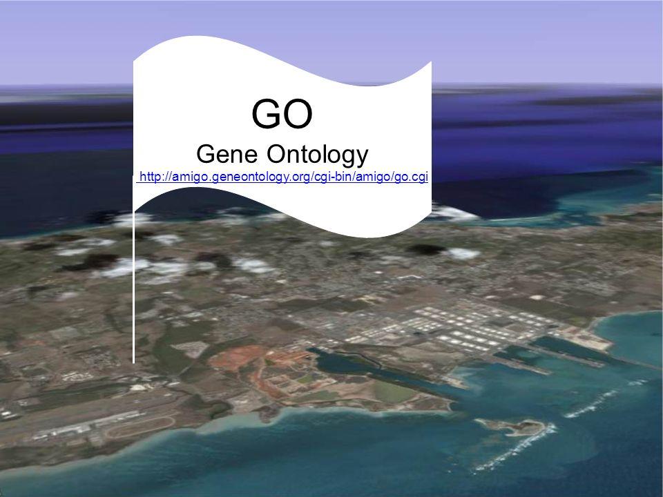 MeSH: Medical Subject Headings GO Gene Ontology http://amigo.geneontology.org/cgi-bin/amigo/go.cgi http://amigo.geneontology.org/cgi-bin/amigo/go.cgi