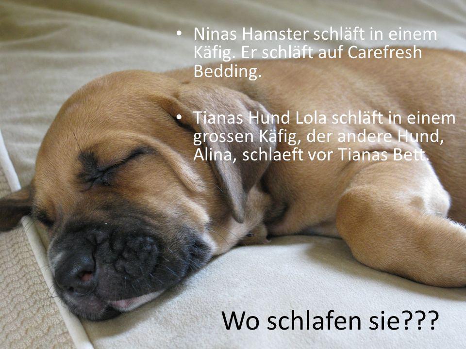 Wo schlafen sie??? Ninas Hamster schläft in einem Käfig. Er schläft auf Carefresh Bedding. Tianas Hund Lola schläft in einem grossen Käfig, der andere