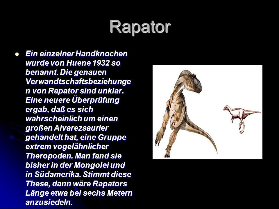 Rapator Ein einzelner Handknochen wurde von Huene 1932 so benannt. Die genauen Verwandtschaftsbeziehunge n von Rapator sind unklar. Eine neuere Überpr