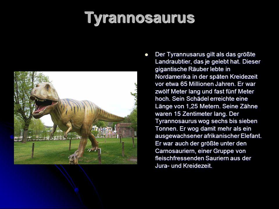 Tyrannosaurus Der Tyrannusarus gilt als das größte Landraubtier, das je gelebt hat. Dieser gigantische Räuber lebte in Nordamerika in der späten Kreid