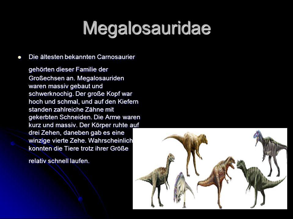 Megalosauridae Die ältesten bekannten Carnosaurier gehörten dieser Familie der Großechsen an. Megalosauriden waren massiv gebaut und schwerknochig. De