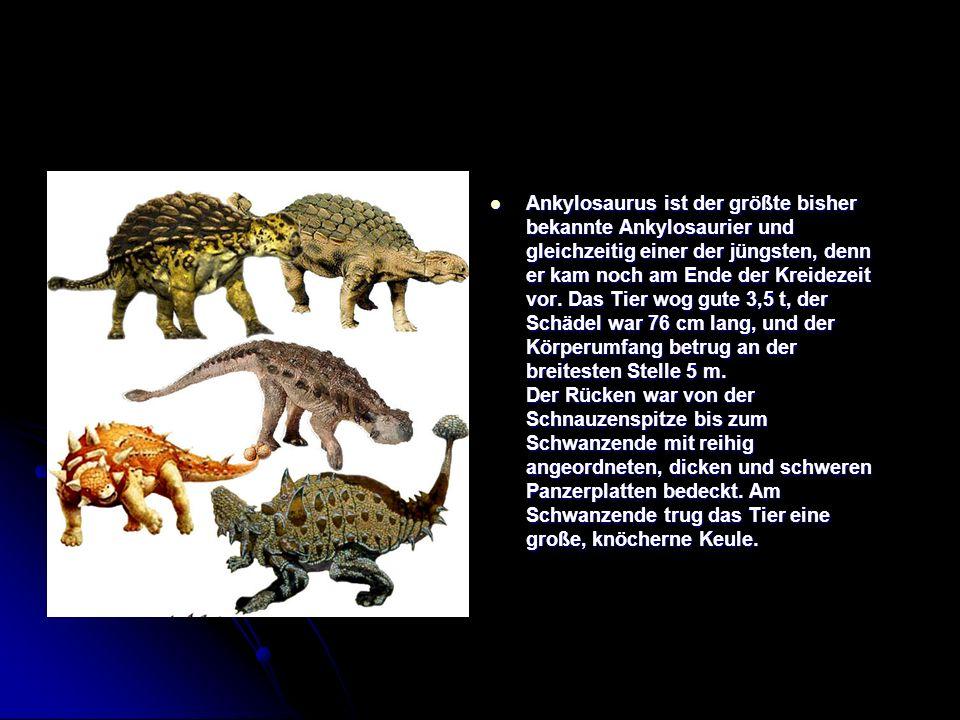 Ankylosaurus ist der größte bisher bekannte Ankylosaurier und gleichzeitig einer der jüngsten, denn er kam noch am Ende der Kreidezeit vor. Das Tier w