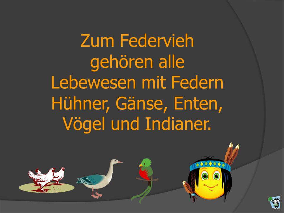 Zum Federvieh gehören alle Lebewesen mit Federn Hühner, Gänse, Enten, Vögel und Indianer.
