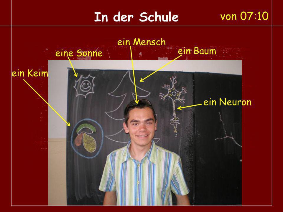 In der Schule ein Neuron ein Mensch eine Sonne ein Baum ein Keim von 07:10