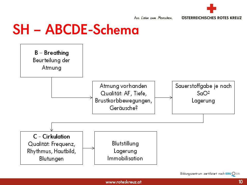 www.roteskreuz.at Bildungszentrumzertifiziert nach SH – ABCDE-Schema 10 Atmung vorhanden Qualität: AF, Tiefe, Brustkorbbewegungen, Geräusche.
