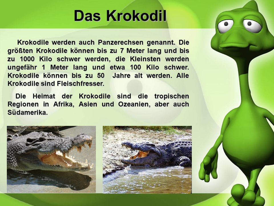 Die Schildkröte Es gibt mehr als 300 verschiedene Arten, welche in Wasser-und Landschildkröten unterteilt sind. Schildkröte könnenbis zu 250 Zentimete