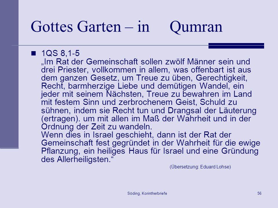 Söding, Korintherbriefe56 Gottes Garten – in Qumran 1QS 8,1-5 Im Rat der Gemeinschaft sollen zwölf Männer sein und drei Priester, vollkommen in allem,
