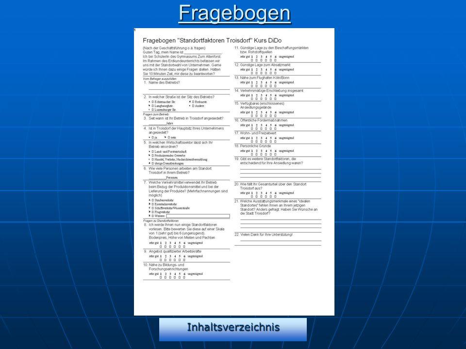 InhaltsverzeichnisFragebogen