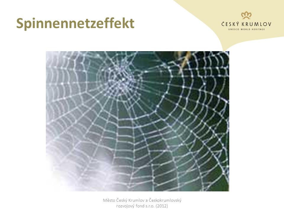 Spinnennetzeffekt Město Český Krumlov a Českokrumlovský rozvojový fond s.r.o. (2012)