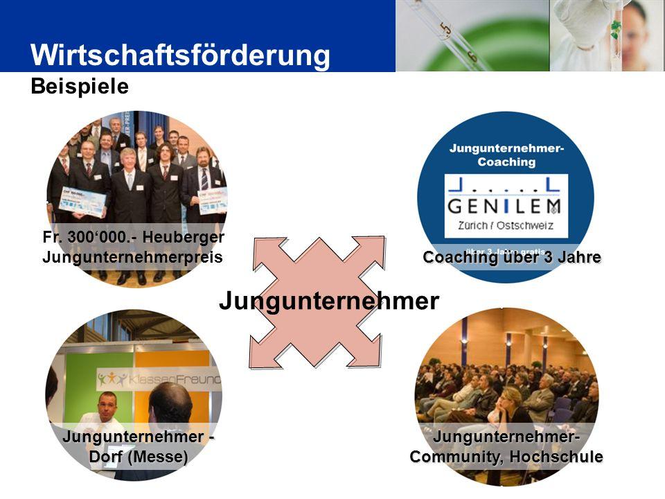 Wirtschaftsförderung Beispiele Jungunternehmer Jungunternehmer - Dorf (Messe) Coaching über 3 Jahre Fr.