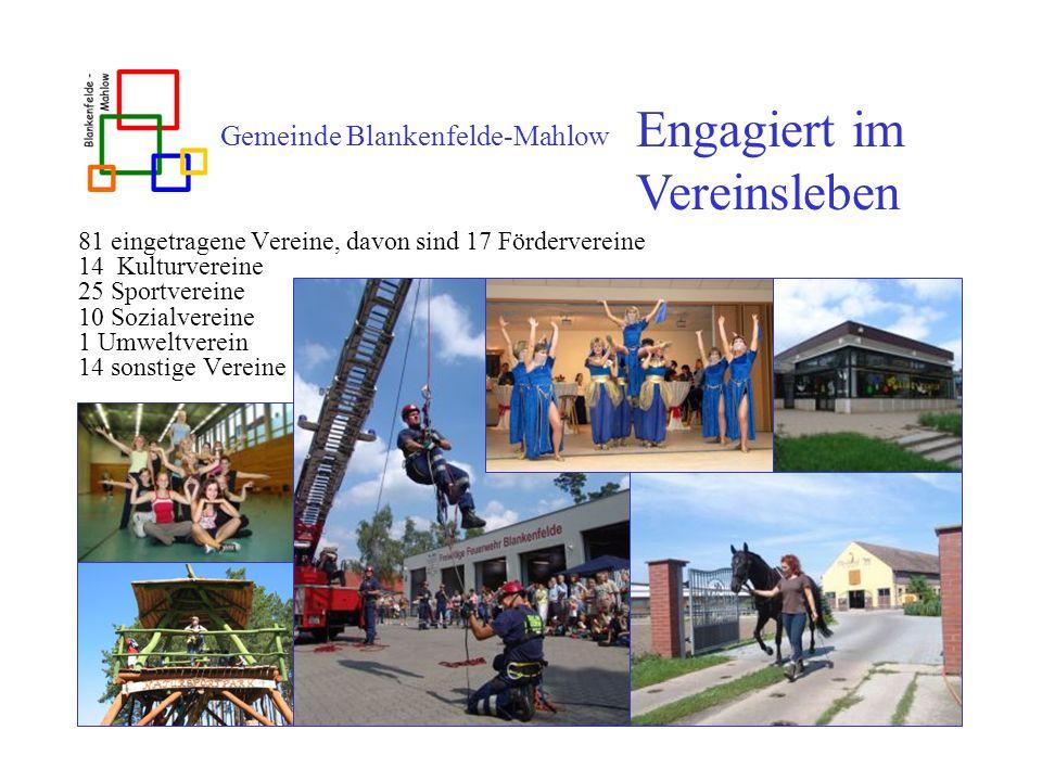 Gemeinde Blankenfelde-Mahlow 81 eingetragene Vereine, davon sind 17 Fördervereine 14 Kulturvereine 25 Sportvereine 10 Sozialvereine 1 Umweltverein 14