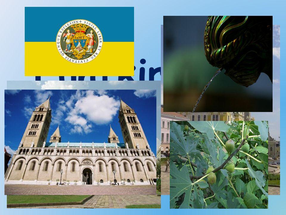 Fünfkirchen- Pécs Unsere Heimatstadt, die Pécs heißt, liegt am Fuße des Mecsek Gebirges, und hat eine mehr als 2000 jährige Geschichte.