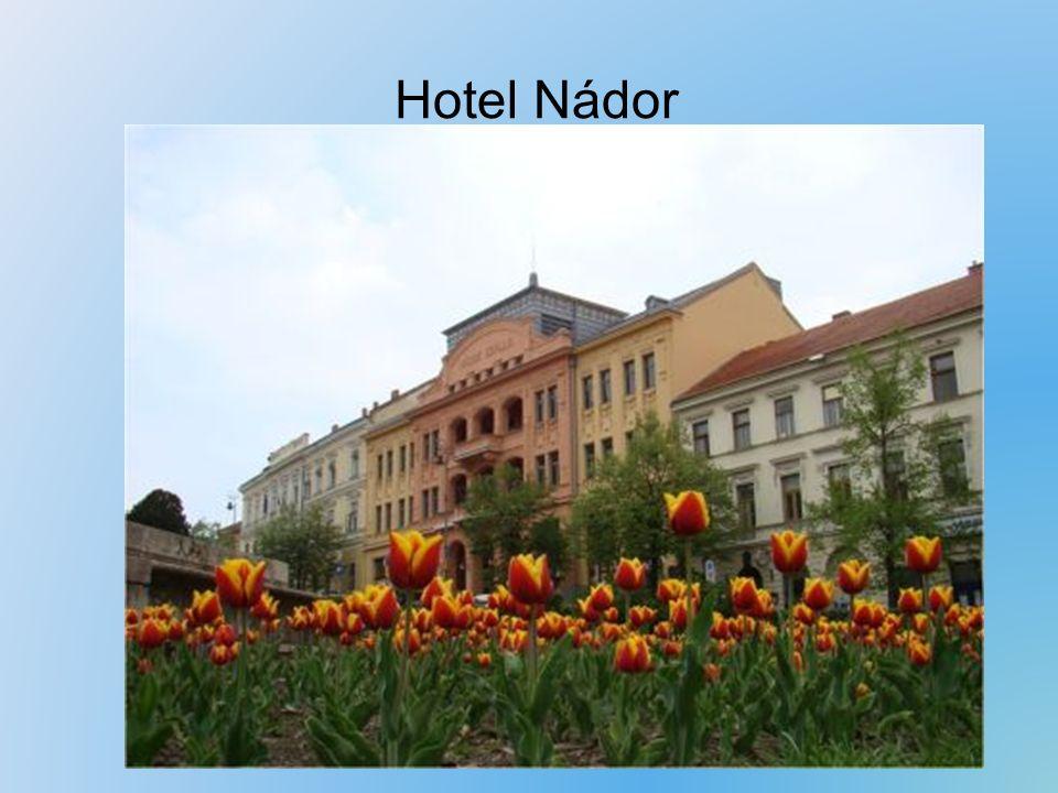 Hotel Nádor