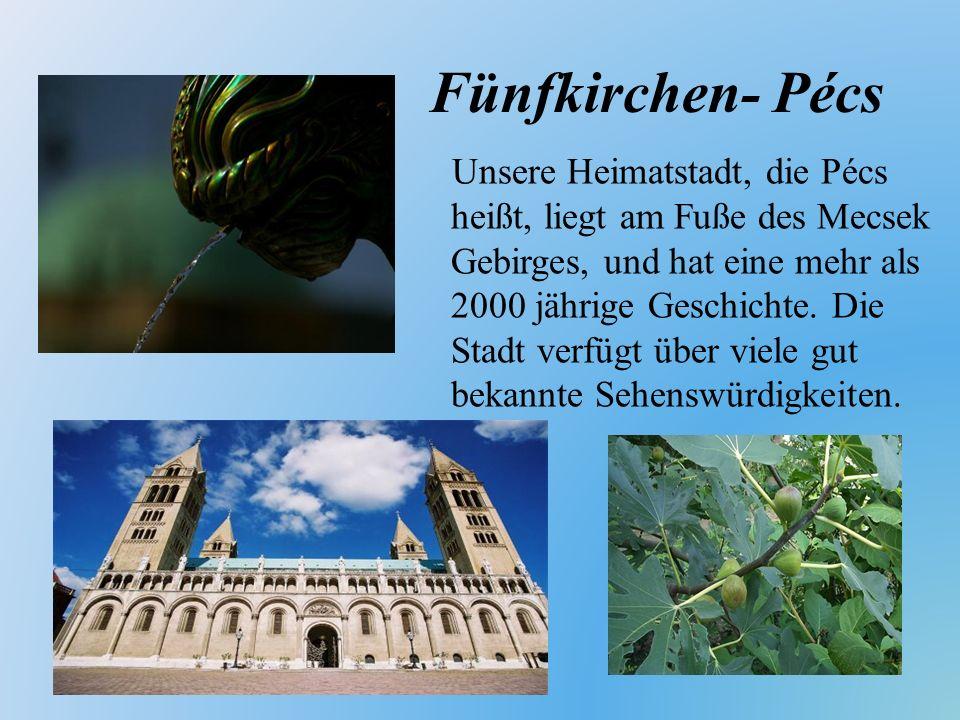 Eine große Veranstaltung des deutschen Zweiges: Schwabenball (2008)
