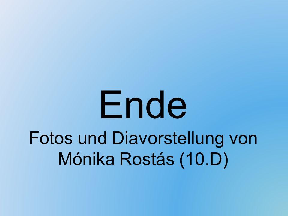 Ende Fotos und Diavorstellung von Mónika Rostás (10.D)