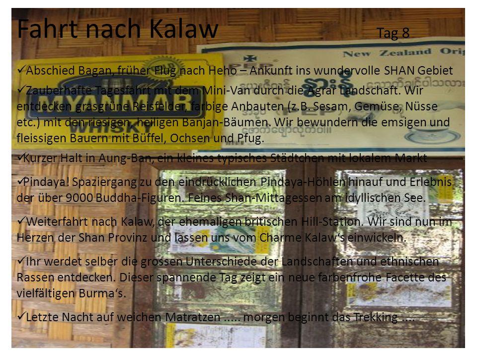 Fahrt nach Kalaw Tag 8 Abschied Bagan, früher Flug nach Heho – Ankunft ins wundervolle SHAN Gebiet Zauberhafte Tagesfahrt mit dem Mini-Van durch die A