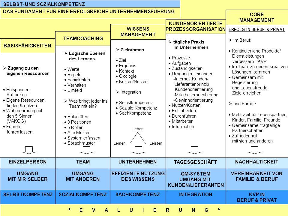 QM-SYSTEM UMGANG MIT KUNDEN/LIEFERANTEN Logische Ebenen des Lernens Werte Regeln Fähigkeiten Verhalten Umfeld Was bringt jeder ins Team mit ein? Polar