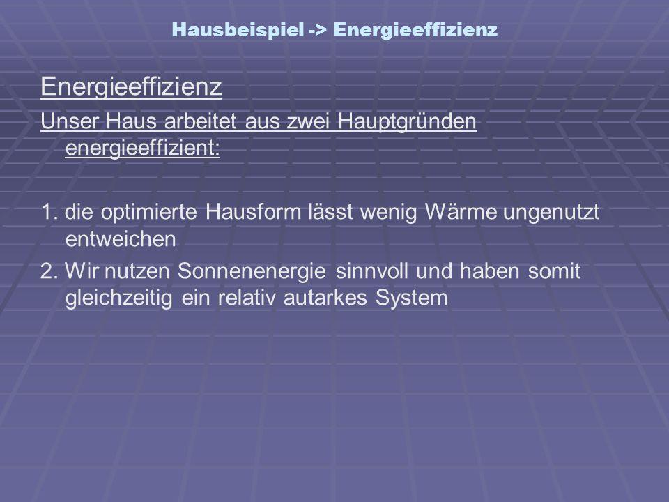 Hausbeispiel -> Energieeffizienz Energieeffizienz Unser Haus arbeitet aus zwei Hauptgründen energieeffizient: 1. die optimierte Hausform lässt wenig W