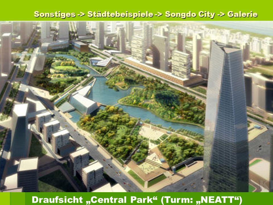 Sonstiges -> Städtebeispiele -> Songdo City -> Galerie Draufsicht Central Park (Turm: NEATT)