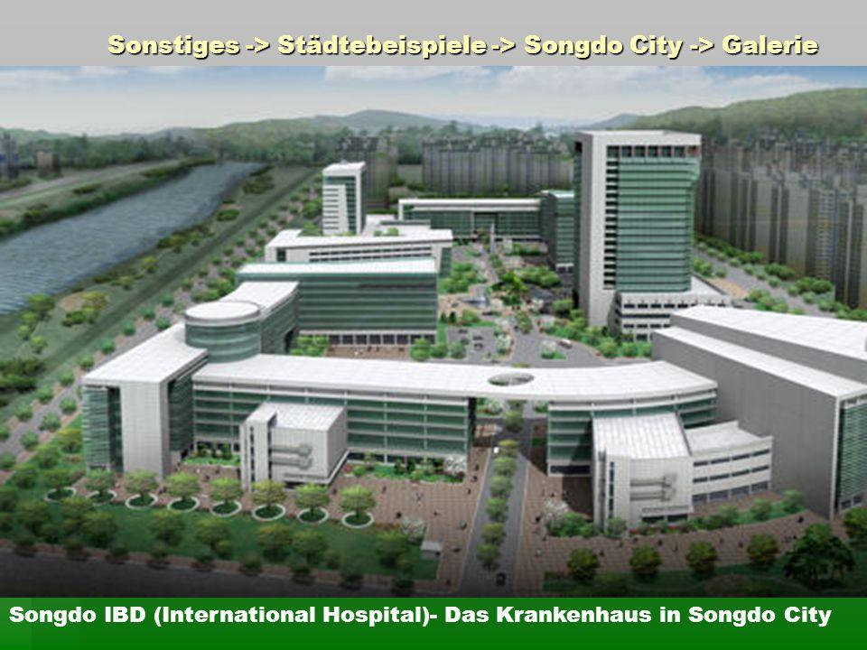 Sonstiges -> Städtebeispiele -> Songdo City -> Galerie Songdo IBD (International Hospital)- Das Krankenhaus in Songdo City