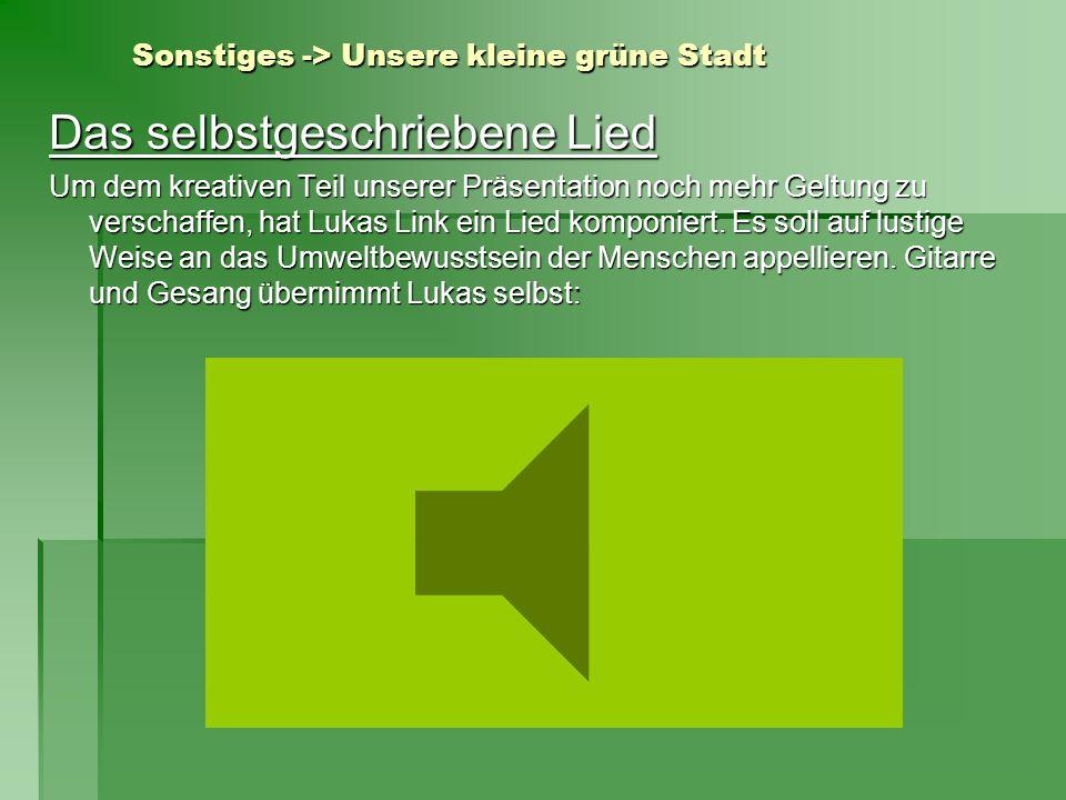 Sonstiges -> Unsere kleine grüne Stadt Das selbstgeschriebene Lied Um dem kreativen Teil unserer Präsentation noch mehr Geltung zu verschaffen, hat Lu