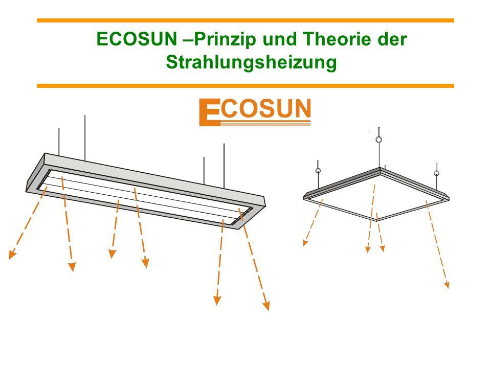 Durch die Platten ECOSUN S können z.B. auch die Flugzeuge in kalten Flugzeughallen temperiert werden, und so können die Probleme mit möglicher Vereisu