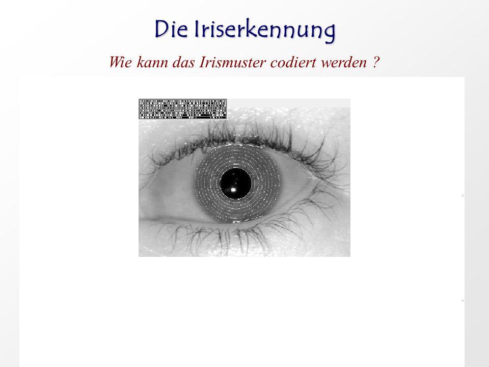 Die Iriserkennung Wie kann das Irismuster codiert werden ?..