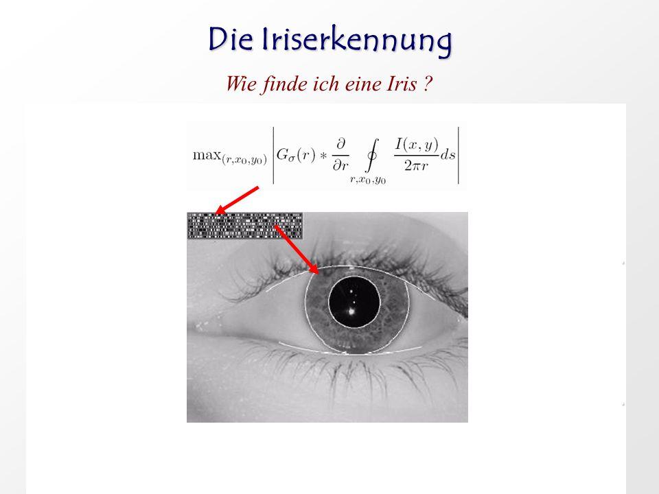 Die Iriserkennung Wie finde ich eine Iris ?.. 1. Bild wir im Nahinfrarotbereich aufgenommen, dabei sollte die Iris etwa einen Durchmesser von 100-140