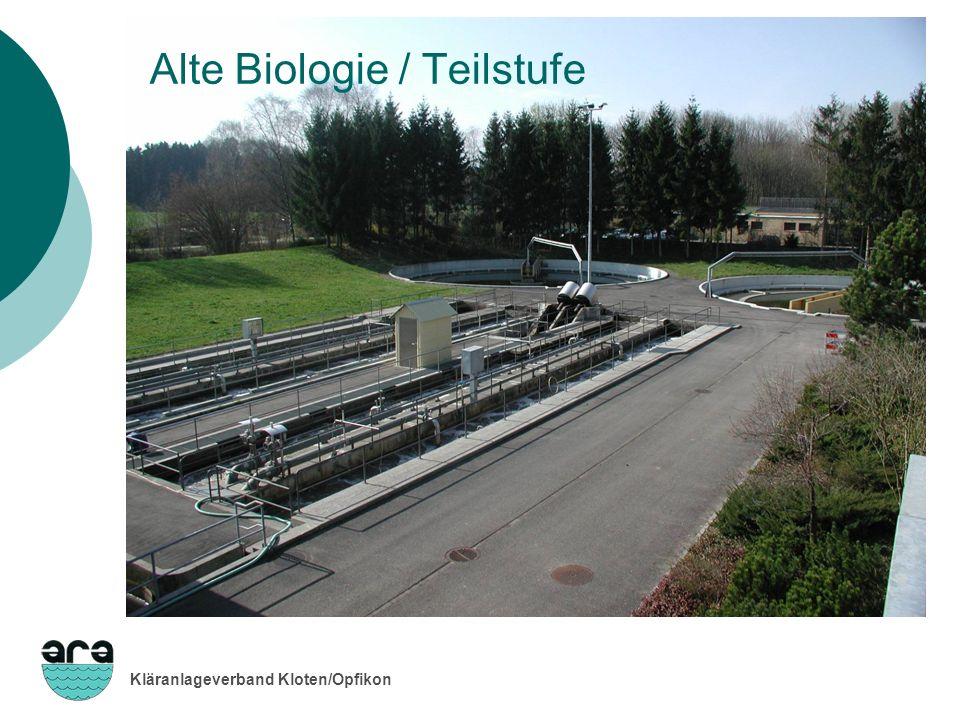 Kläranlageverband Kloten/Opfikon Alte Biologie / Teilstufe
