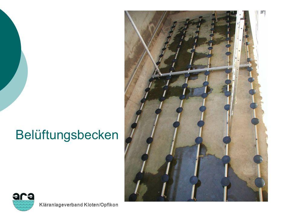 Kläranlageverband Kloten/Opfikon Belüftungsbecken