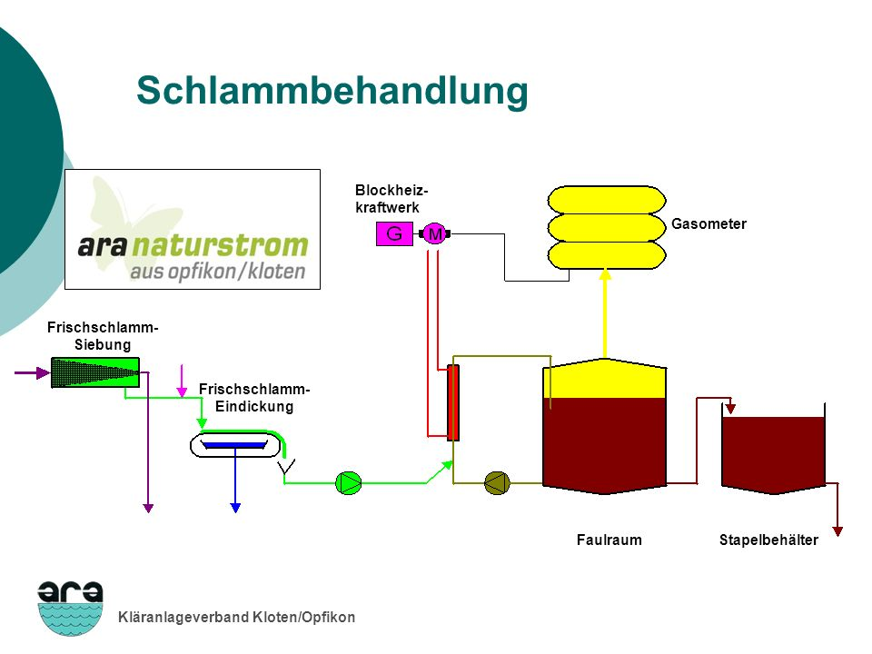 Kläranlageverband Kloten/Opfikon Schlammbehandlung Stapelbehälter Blockheiz- kraftwerk Gasometer Faulraum Frischschlamm- Eindickung Frischschlamm- Sie