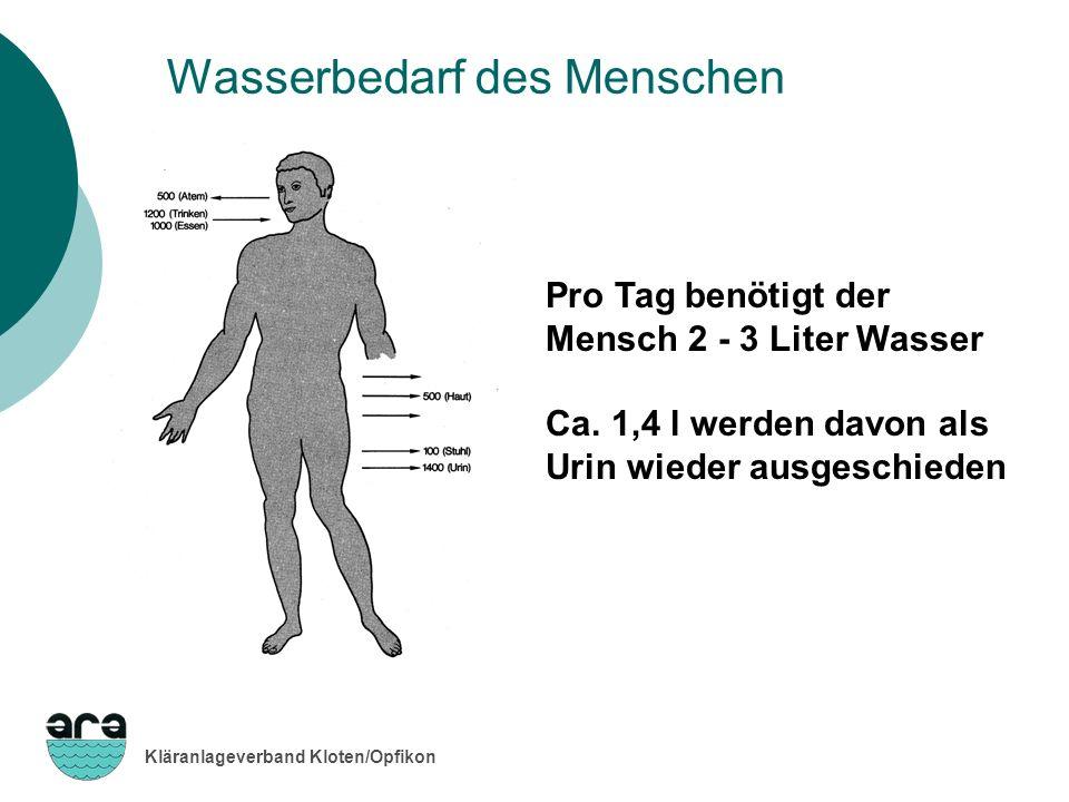 Kläranlageverband Kloten/Opfikon Durchschnittlicher Wasserverbrauch im Privathaushalt Quelle: SVGW/BUWAL Baden, Duschen 32 l/E * d, 20% Geschirrspüler 4 l/E * d, 2% Toilettenspülung 48 l/E * d, 31% Kochen, Trinken, Geschirrspülen von Hand 24 l/E * d, 15% Körperpflege, Wäsche von Hand 21 l/E * d, 13% Waschmaschine 30 l/E * d, 19% 160 Liter pro Einwohner und Tag