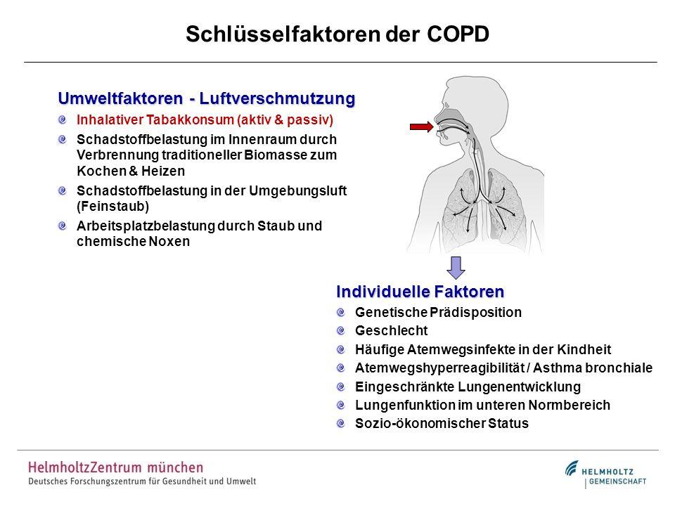 Schlüsselfaktoren der COPD Umweltfaktoren - Luftverschmutzung Inhalativer Tabakkonsum (aktiv & passiv) Schadstoffbelastung im Innenraum durch Verbrenn